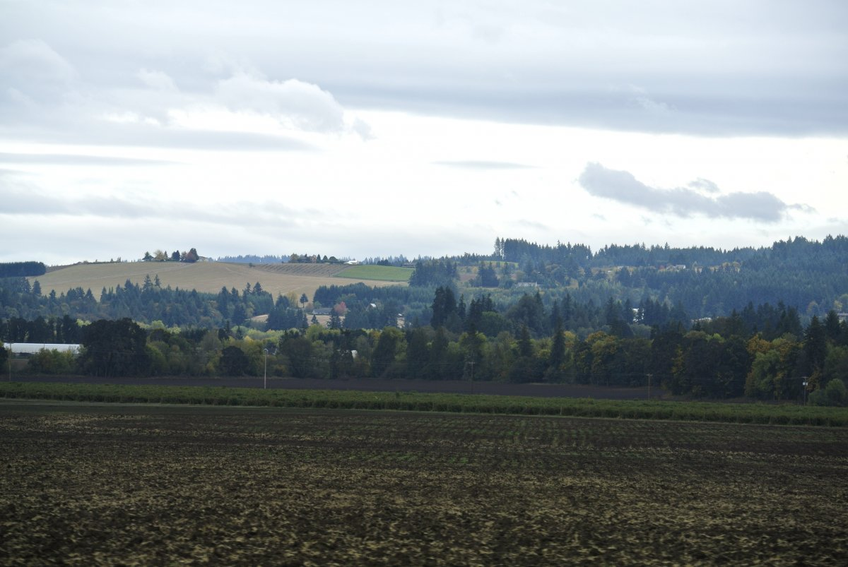 View of the countryside on the way to Oregon Heritage Farms