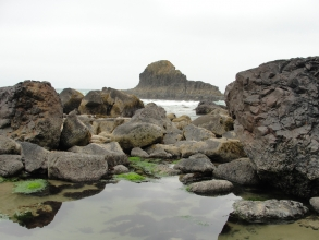 View from the sea rocks as the tide is coming back in