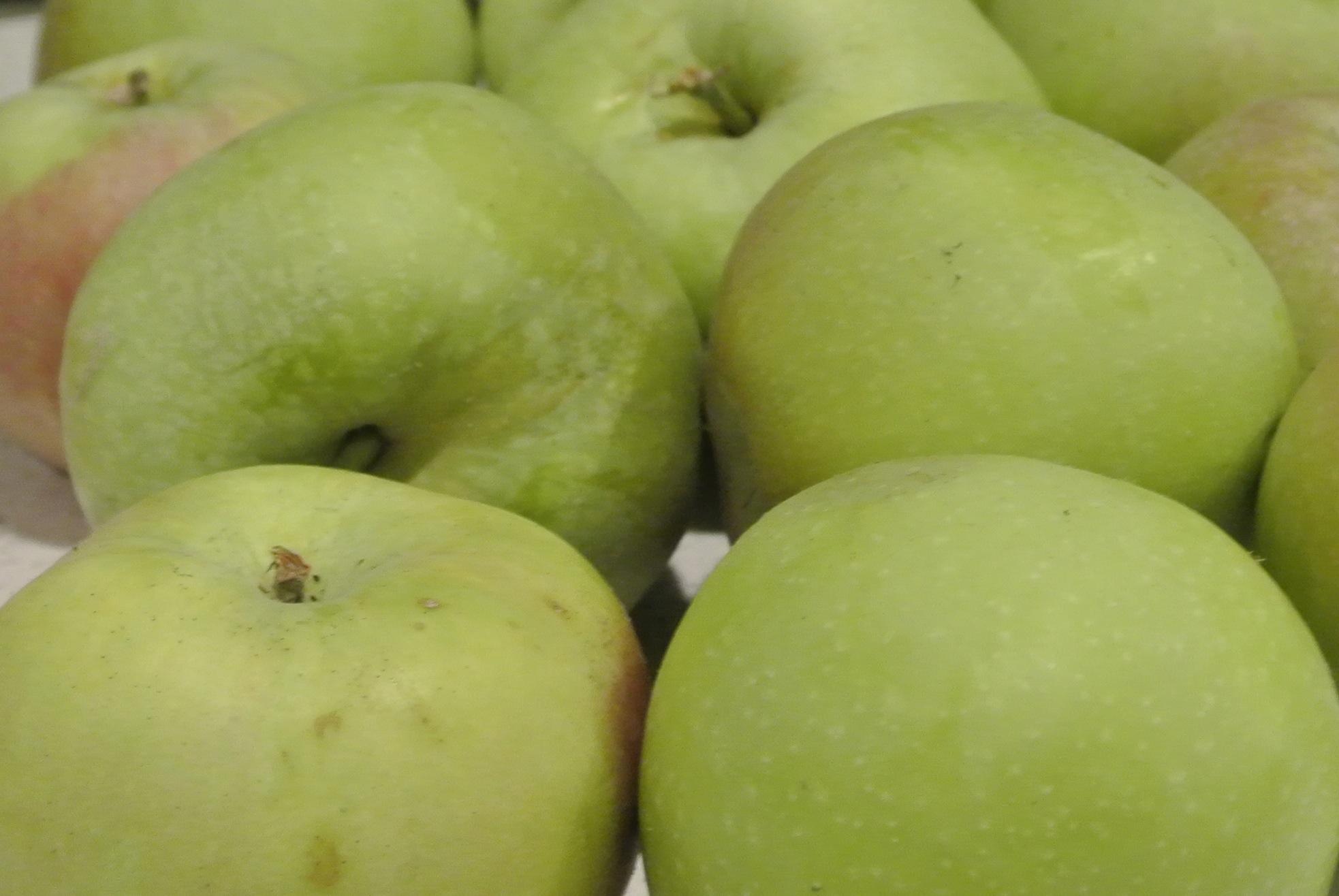 We've Got Apples