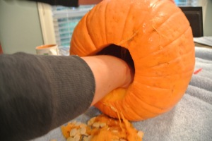 Never aspired to be a Pumpkin Gynecologist