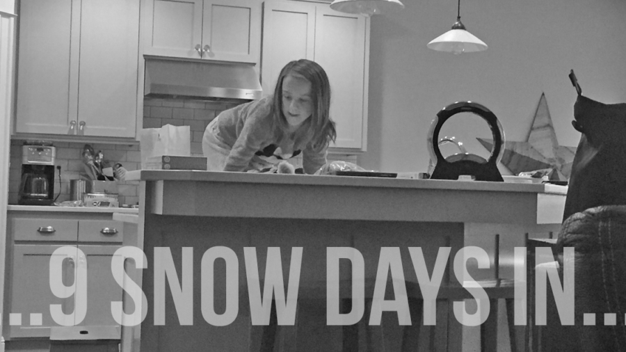 9 Snow Days In