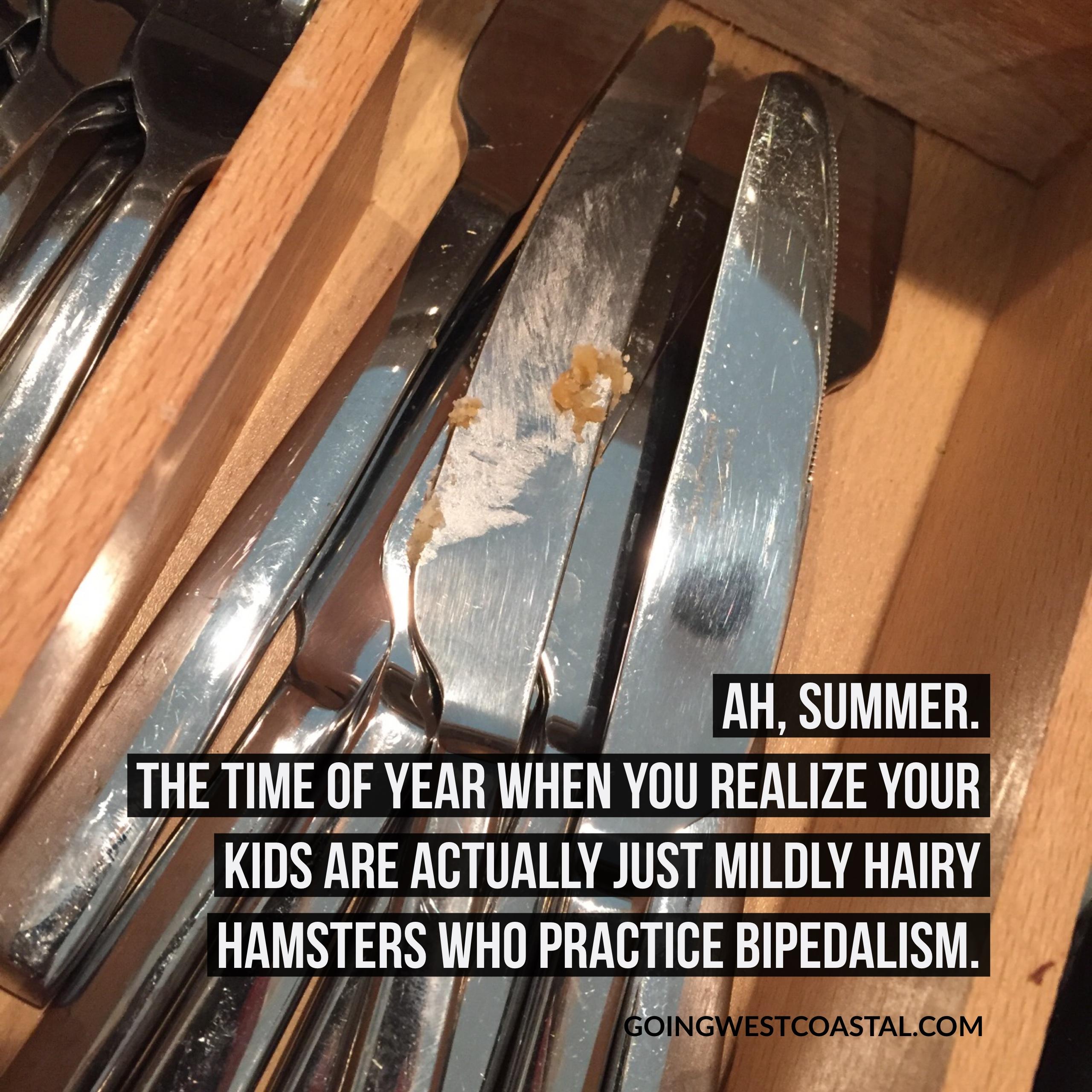 Kids & Summer